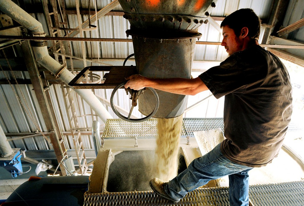 Maine's only dedicated organic grain mill was built in 1963 on a 2-acre plot in Auburn, Maine, right next to the railroad tracks. It has a loading and weighing station and 10 storage tanks. (Photo: Daryn Slover/Sun Journal