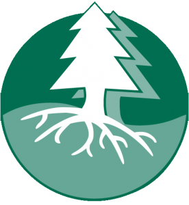 cdi logo 4c transparent bg